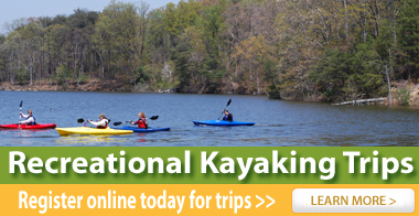Recreational Kayaking Trips