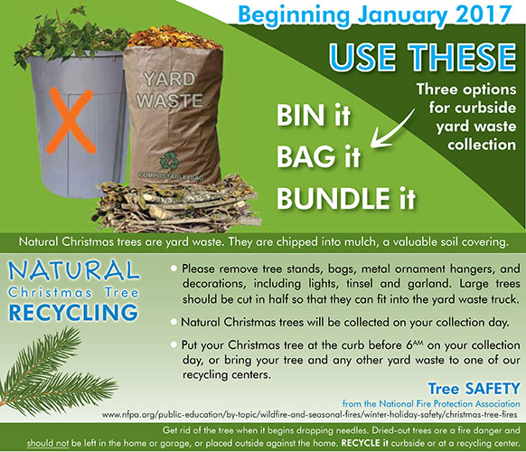 Free Christmas Tree Pick Up: AND CHRISTMAS TREE PICK UP