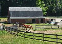 Andy Smith Equestrian Center