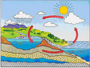 Image: Water Cycle
