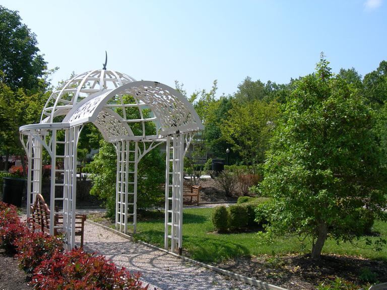 A Wedding in Quiet Waters Park