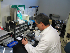 image: crime lab technician