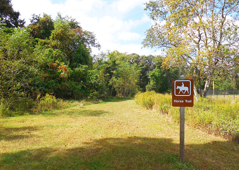 Equestrian Access to Trails